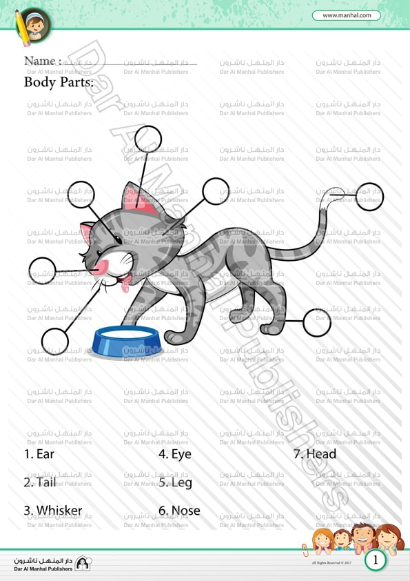Body Parts Cat – Body Part Worksheet