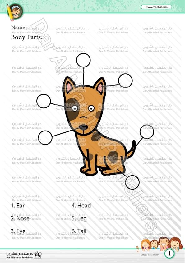 Body Parts Dog