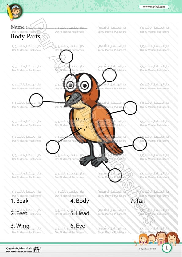 body parts bird 1 science worksheets