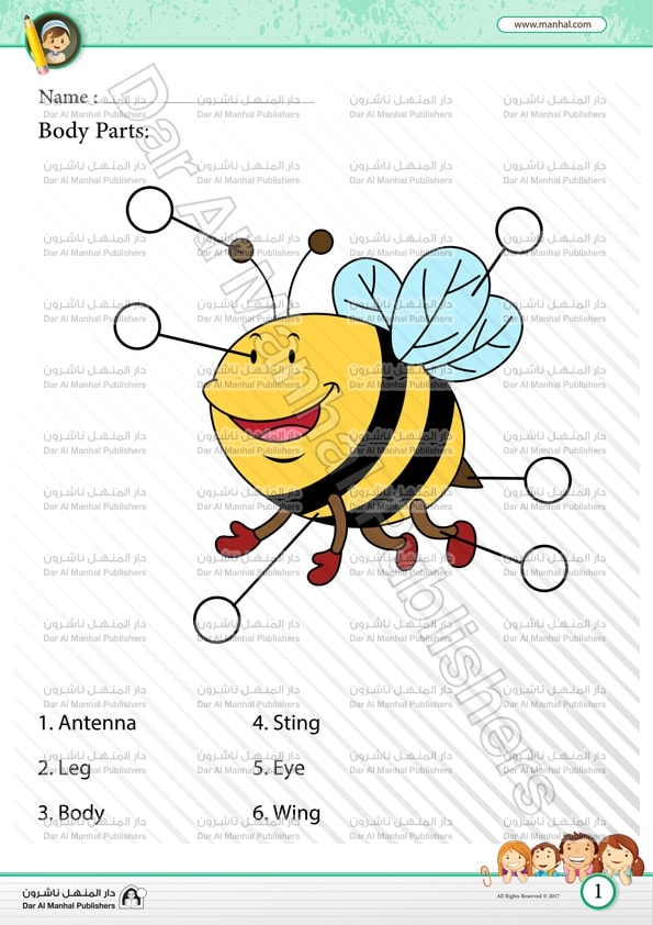 Body Parts - Bee 1 | Science WorkSheets