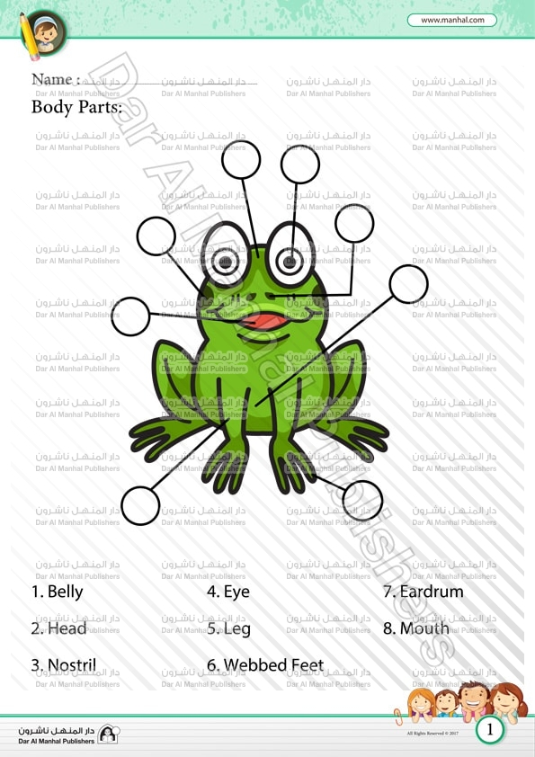 Body Parts Frog Science Worksheets