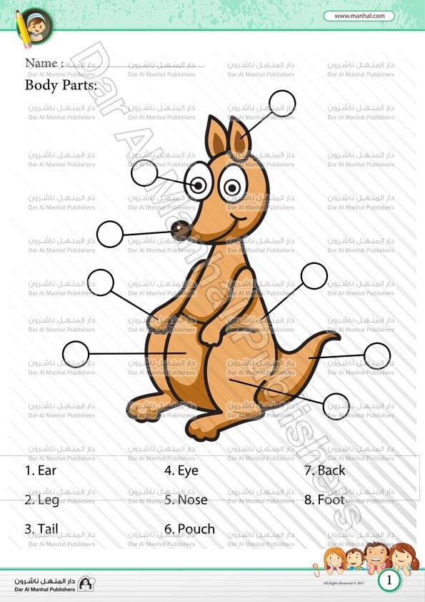 Body Parts - Kangaroo | Science WorkSheets