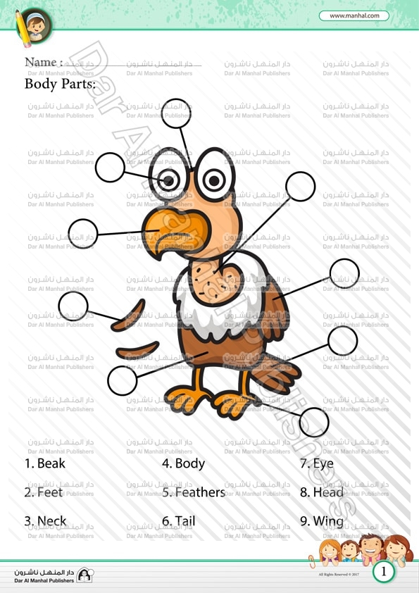 Body Parts Eagle Science Worksheets