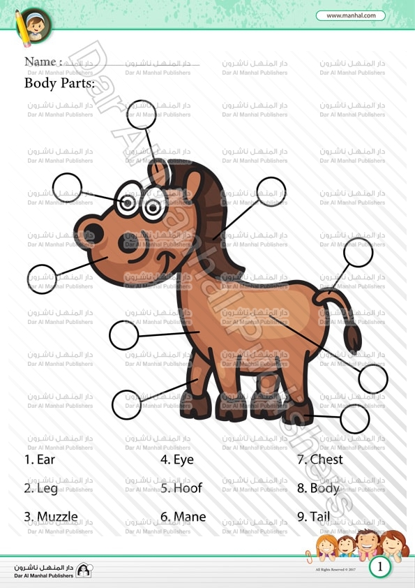 Body Parts Horse Science Worksheets
