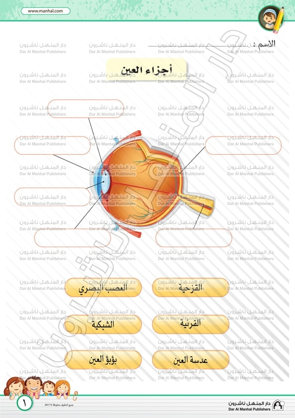 The Eye Parts Science Worksheets