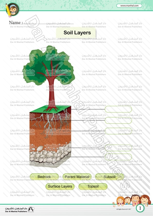 Soil layers 1 for Soil layers worksheet