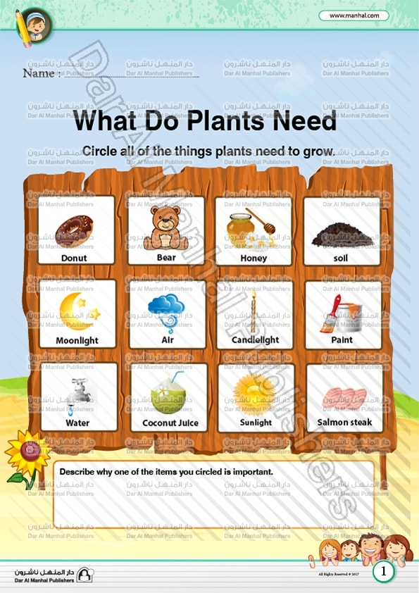 Plants Needs Science Worksheets
