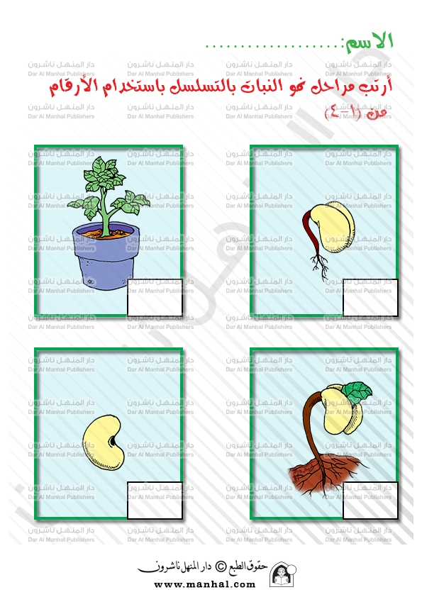 Plants growth stages