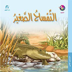 التمساح الصغير
